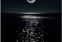 By the Light of the Silvery Moon / by Diane Gallardo-Cannella
