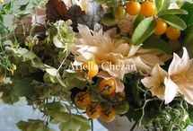 Tomato plant arrangement