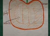 Fall Lesson Ideas / by Lauren Dabrowski