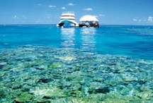 Reefworld / Reefworld is a pontoon that sits on the Great Barrier Reef. From here you can explore the Great Barrier Reef in style. This underwater wonderland is not to be missed. Get there by cruising with Awesome Whitsundays or Cruise Whitsundays.