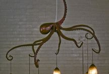 Octokeely / All things the beautiful octopus. / by Keely Weis-Photography