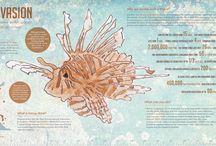 Lionfish Facts & Trivia / Lionfish facts & trivia from around the web.