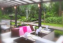 Video Moments in Costa Rica / Videos from the Caribbean Coast of Costa Rica. Explore Costa Rica. Visit our beautiful boutique hotel in Costa Rica and feel la vida pura.