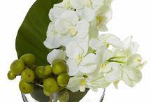 Flower Arrangement / by Abubu Minotzki