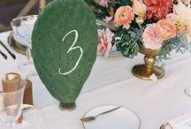 Mariage Cactus et succulentes