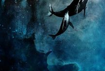 Flying Whales and Orca