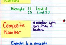 Division  / Factors divisibility rules long division