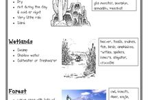 Co-op: habitats/biomes