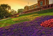 Travel: Disneyland & Los Angeles / Photography and travel ideas when visiting Disneyland in Anaheim and the surrounding area.