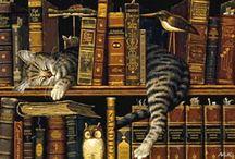 Animacje zwierzęta - kotki