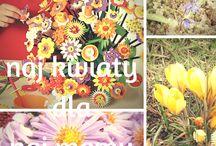 Na Dzień Matki / Co mamy od mamy? Czasem trudno to zliczyć, zważyć, czy zmierzyć :) A co mamy dla mamy na Dzień Matki? Czy samodzielnie wyhodowane kwiaty mogą oddać wdzięczność?  Łączymy temat z rozwojem roślin, oglądamy prawdziwe kwiaty o różnorodnych kształtach i robimy nasze własne: odwzorowujące prawdziwe gatunki albo zupełnie baśniowe i kreatywne. Oto nasze inspiracje prezentowe manualno-edukacyjno-emocjonalne :)