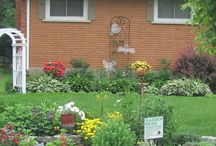 ladyb-gardens