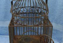 Bird Cage--Bird