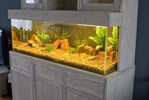 aquariumkast