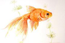 art ryby