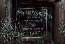 mesaje florarie