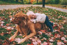 Babies and Goldens