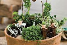 paesaggi con piante