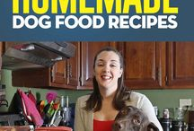 Dog food recepies