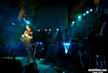 Concert Photography/Reviews