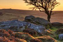Dartmoor, National Park, Devon, UK