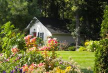 Jardin en el campo