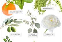 kwiaty i dodatki zielone