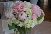 Beautiful Flowers / by Montina Cattell Smith