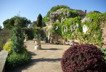 Leeds Castle Gardens / 2016 is the Year of the English Garden! Experience our beautiful grounds and gardens #seasonal #blooms #flowers #gardens #gardening