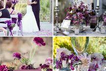 Purple, Violet, Morado...