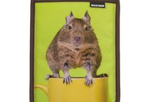Degu themed gifts for Degu Owners / A collection of gift ideas for people who own degus. If it has a degu on it then they'll love it... you can't go wrong!