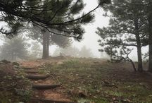 LifeProof Trails / by LifeProof