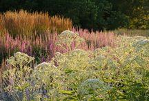 Naturalistic Gardens