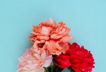 flowers/home/style