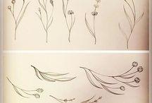Карандашные растения