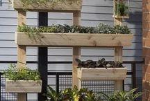 Giardino verticale di erbe aromatiche