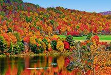 Fall in WNY Rocks