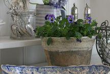 Blue & White / Blue & White Pottery, Ceramics