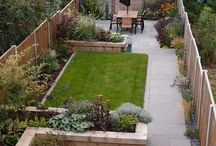 Long Thin Garden - Inspiration