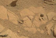 Mars / by Dan Hernandez