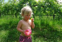 Organic Lifestyle / Helping to teach the benefits of choosing organic food and other products wherever possible