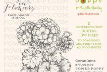 Digi Stamps Power Poppy