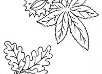 Leaves coloring page / This page has lots of leaves to color. Free coloring pages for kids,parents and teachers