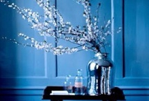 blue rooms / rooms with blue walls or blue elements which create a serene and dreamy effect