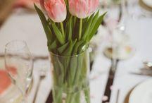 Mareventi a Cervia Sposami 2014 / Rosa per la tavola di Cervia Sposami