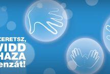Influenza ellenes kampány