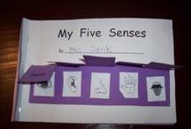 Five senses / by Liz