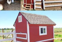 DIY Pet and Farm Housing / A board dedicated to awesome ideas on a do it yourself housing for pets and farm animals.
