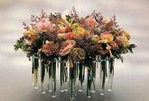 Daniel ost / one of greatest florist in Belgium