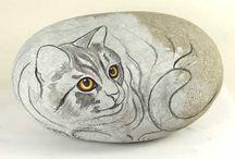 Gatto su sasso